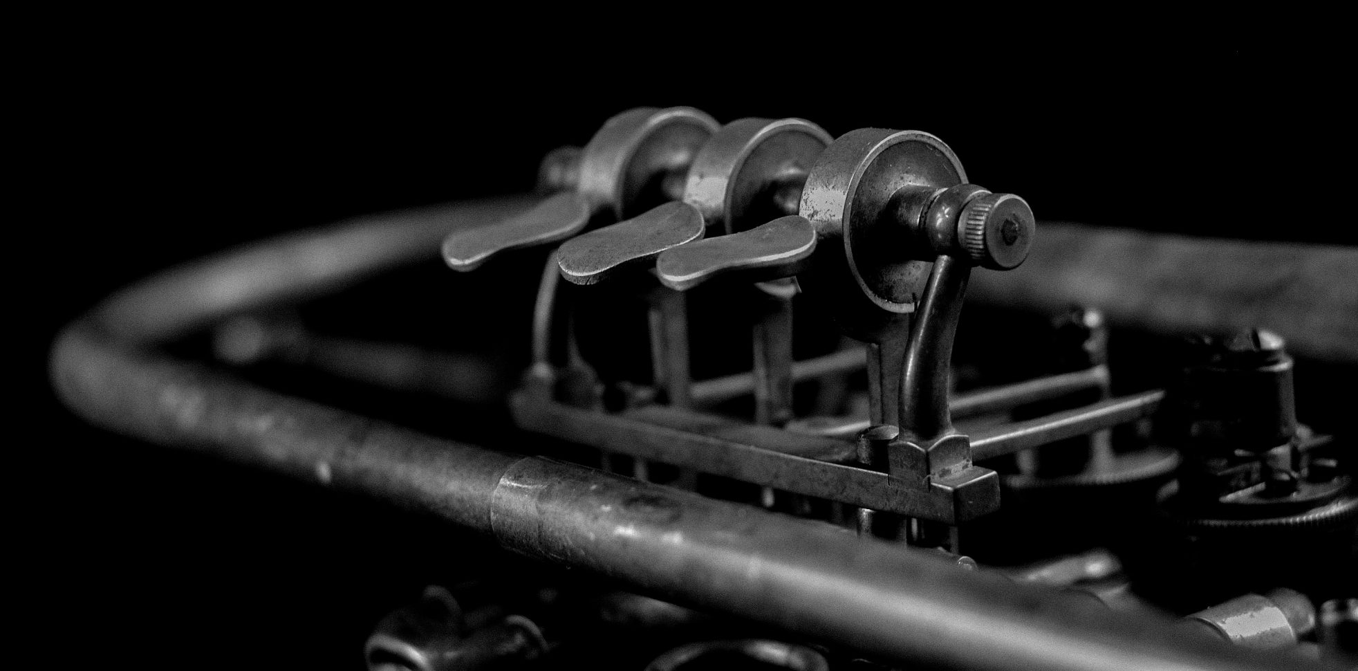 Trumpet Black & White